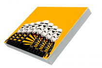 Kaizer Chiefs Group Std Canvas