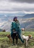 Drakensberg Herder by Janine Lessing