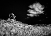 Infrared by Janine Lessing