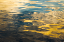 Ripples by Frank Pople