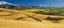 Overberg by Keith Phillips
