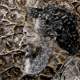 Pensive Texture by Alan Raubenheimer