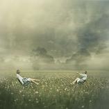 Balance by Keren Stanley