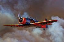 Plane by Liesl du Toit