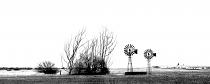 Nieuwoudtville Windmills